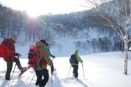 白銀の湯沢高原を森林ガイドと歩く ネイチャースノーシュー