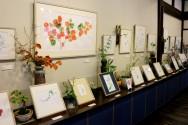 雪国館2017夏季特別展示「外山康雄 野の花館」との共同企画