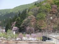 三俣・大島から観た八木沢風景