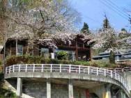 山の湯夫婦桜