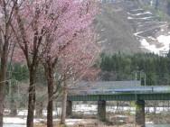上越線ループ鉄橋