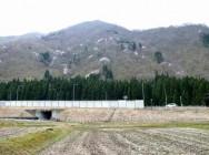 土樽山桜風景
