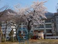 奈良山児童公園