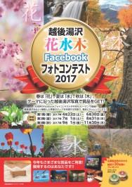 越後湯沢 花水木  Facebookフォトコンテスト2017