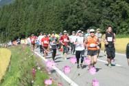 第16回越後湯沢秋桜ハーフマラソン