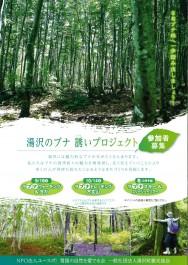 湯沢のブナ 誘いプロジェクト